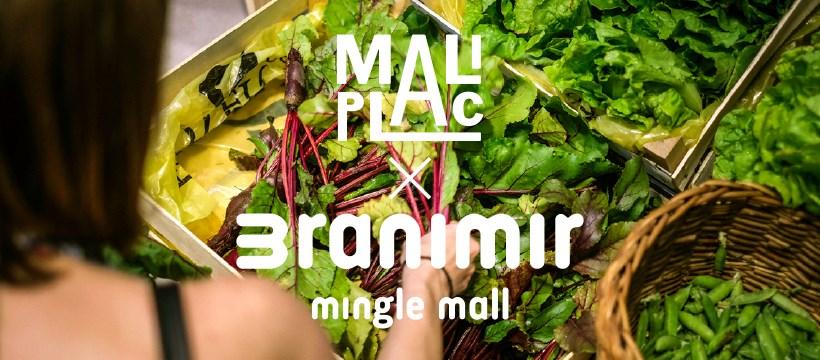 Little market in Branimir mingle mall again